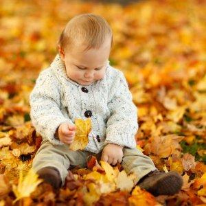 autumn-child-cute-40893